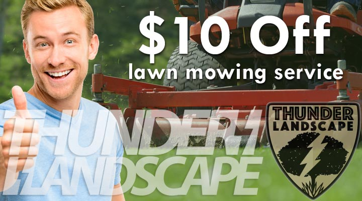 Lawn Maintenance $10 Off